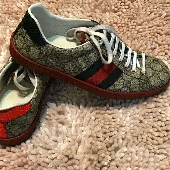 889c49da5 Gucci Shoes | New Ace Webbed Low Top Sneaker Size 8 | Poshmark